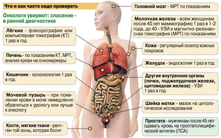 Профилактика рака, онкологии: что еффективно, средства
