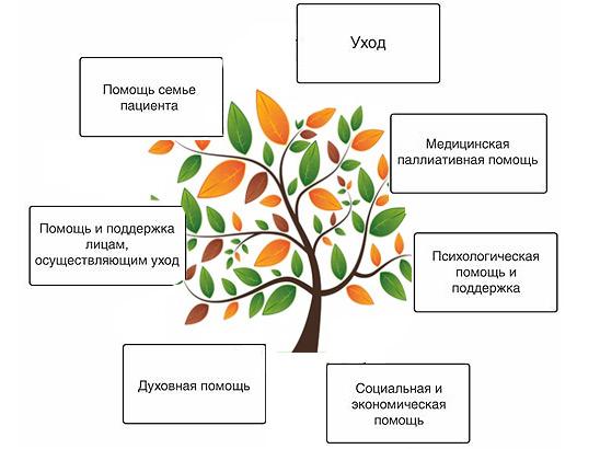 принципы паллиативной помощи, рекомендованные ВОЗ